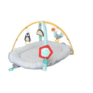 Γυμναστήριο TAF TOYS Newborn Nest & Gym